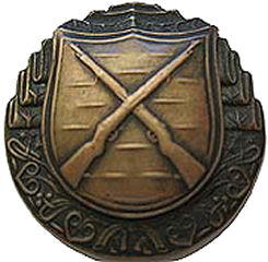 badge-sk-marksman-rifle-2nd