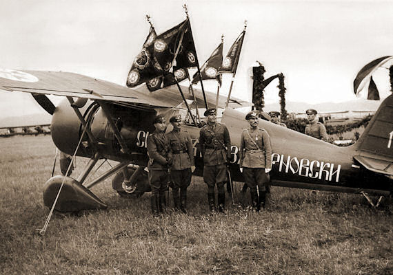 bg-pzl24-flags