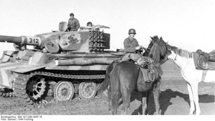 spz-abt-505-horses.jpg